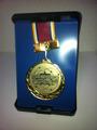 地区大会優勝メダル
