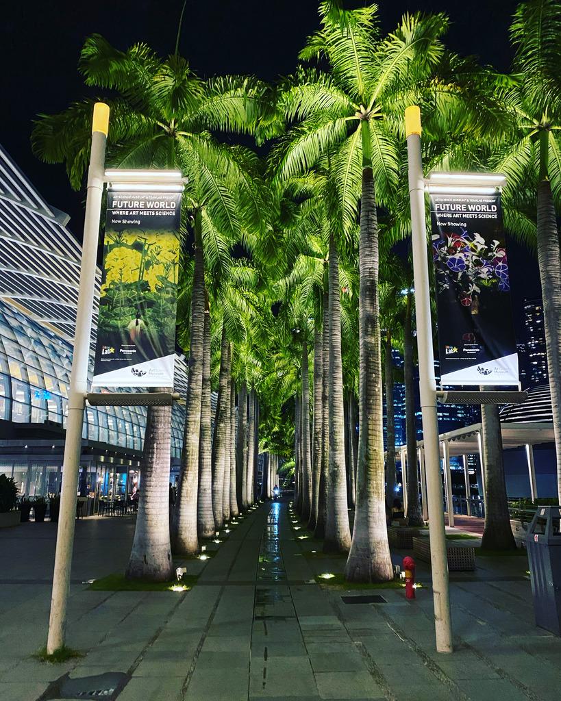 ブログ記事: シンガポールに留まって4ヶ月と緩いダイエット