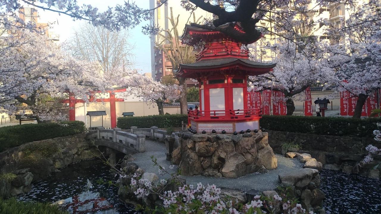 ブログ記事: 英語の勉強