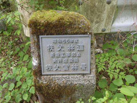 IMGP3221