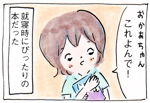 マクドナルド・ハッピーセットの図鑑と絵本【育児絵日記】