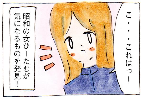昭和の女が気になるものをセリアで発見!【買い物日記】