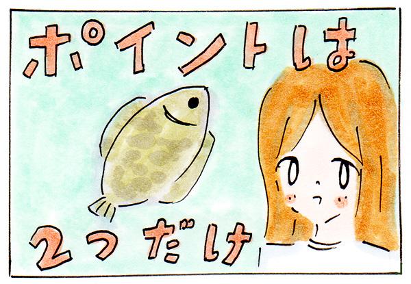【あつ森】超初心者向け!釣り攻略法のポイントは2つだけ【あつまれどうぶつの森】