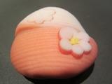 150102和菓子>漉し餡>咲き分