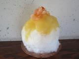 161118かき氷>サンふじりんご