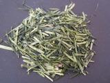 120724超ミル芽茎茶b
