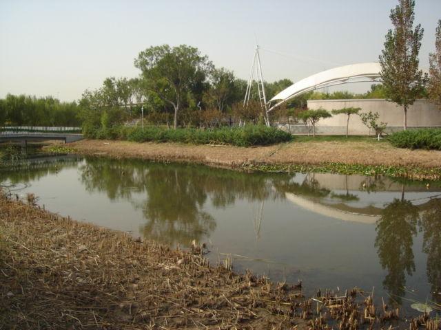 7.緑水園内の河