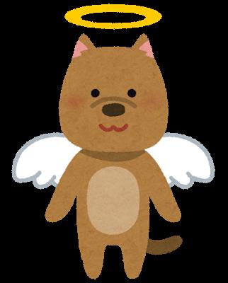 pet_angel_dog