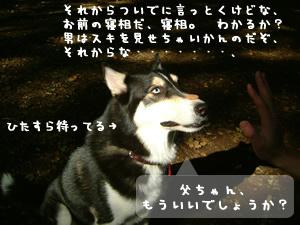 富士丸くん4