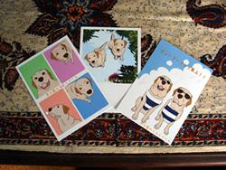 ポストカード写真