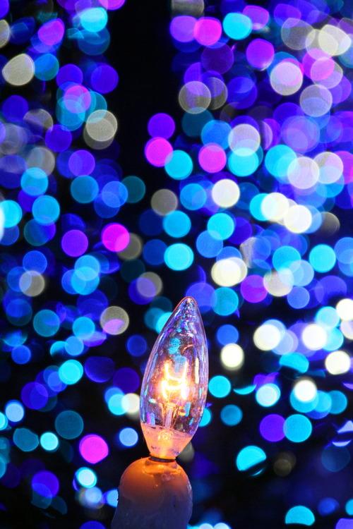 クリスマスキャンドルの灯は