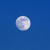 moon_135