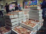 三国港魚市場