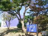 三国湊の「オノ メモリアル」