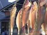 魚の天日干し