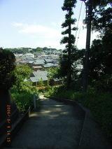 三国高校の坂段より三国神社の森を望む