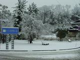 三国湊は今冬最深雪