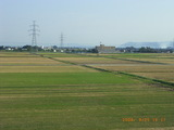 三国湊の秋の田圃