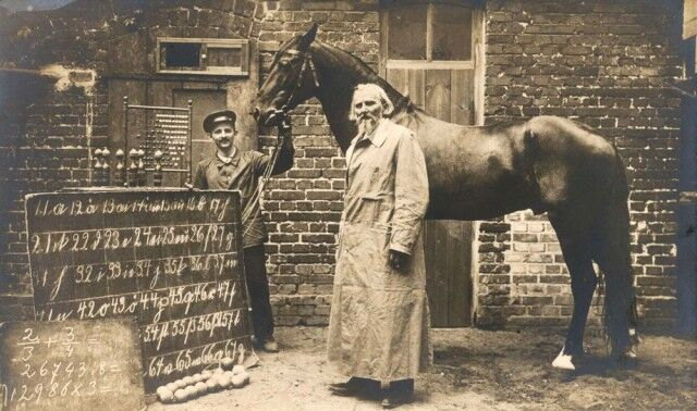 かつてドイツには人の言葉が分かり数が数えられる馬がいた。賢馬「ハンス」の物語