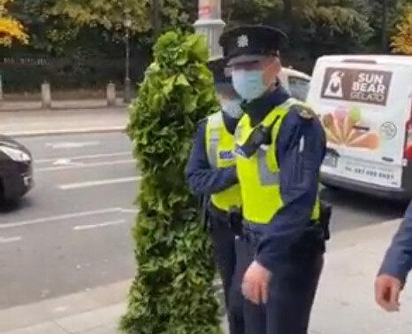 【キャー!!】アイルランドの女性警官が植物にビビる動画wwwwwwww