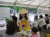 フラワーフェスティバルin西宮 2010〜14〜