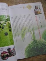 苔玉の種を蒔く〜その2〜