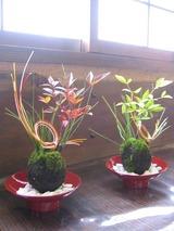 苔玉〜迎春の風景〜を作りましょう♪