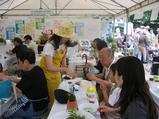 フラワーフェスティバルin西宮 2010〜13〜