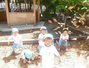 足立区の幼稚園・正規職求人