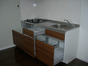 DSCN4313