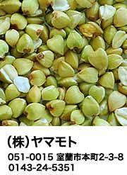 _ヤマモトSIDE_COLUM_180_247