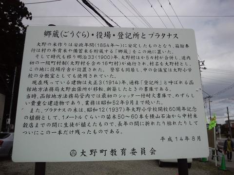 CA3I0536