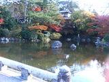 ひょうたん池2