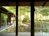 竹林公園1