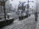 20080209雪1