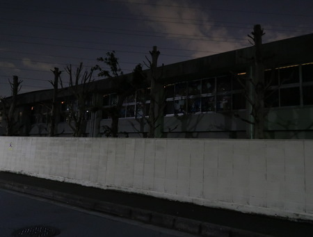IMG_1387