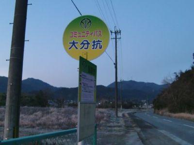 daibuko02
