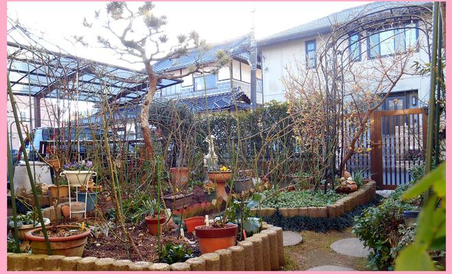 170107=My-garden