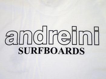 andreini2