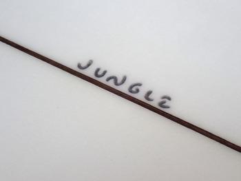 jun35