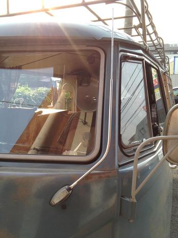 bussafari1