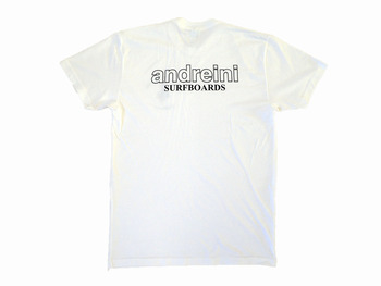 andreini5