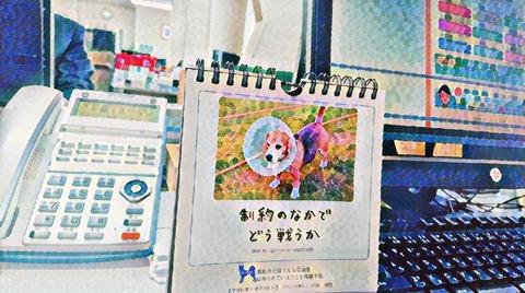 IMG-PHOTO-ART-1742586340