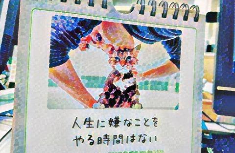 IMG-PHOTO-ART-391853802
