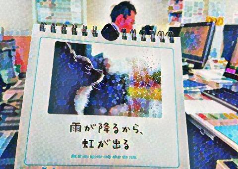 IMG-PHOTO-ART--1636261255