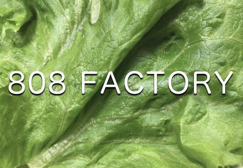 808factory[1]