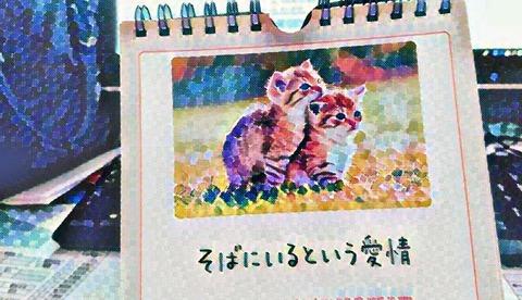 IMG-PHOTO-ART--699662161