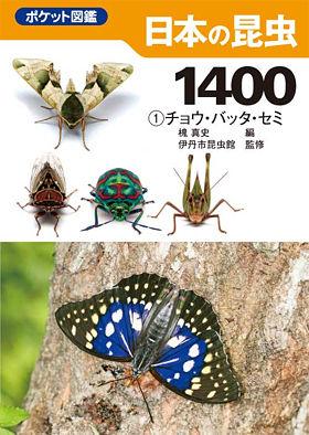 表紙・日本の昆虫