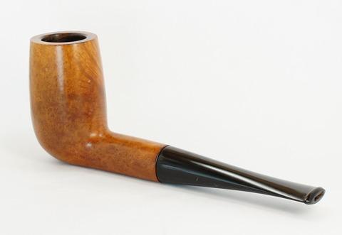 DSC07813 (1)