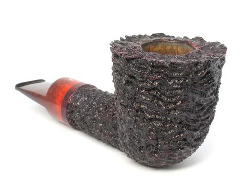 DSC09876 (1)